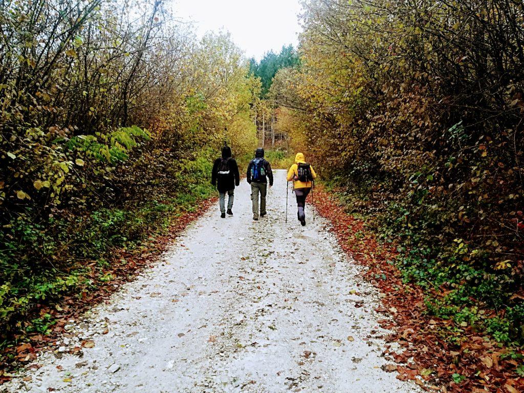 croatia, travel, discover, tourism, mountain, hiking, climbing, sv. gera, slovenia, trdinov vrh, nature