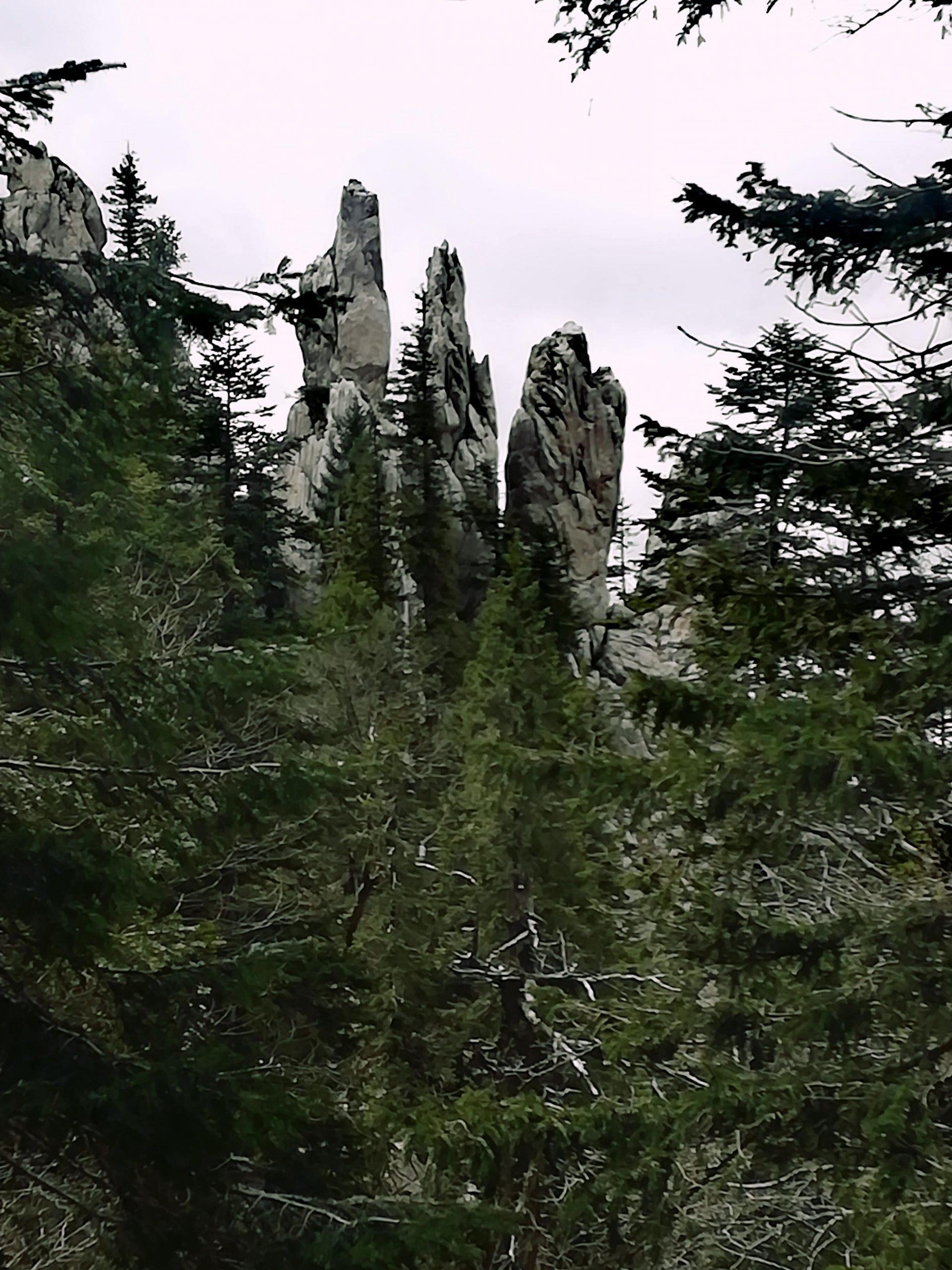 "Rock formation ""Fingers"". Four tall rock pillars in White rock reservation near Ogulin, Croatia."