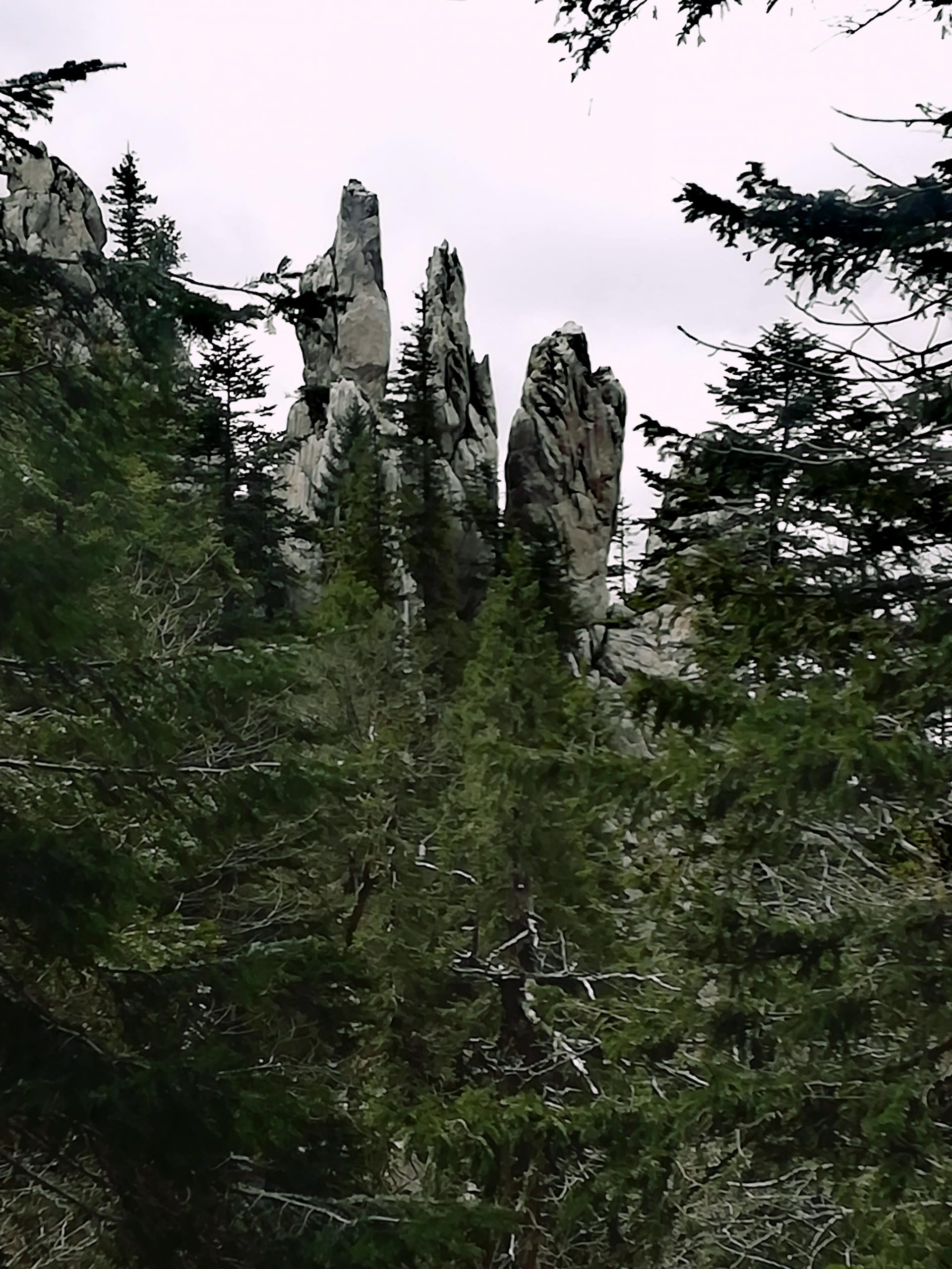"Rock formation ""Fingers"". Four tall rock pillars in White rock reservation near Ogulin, Croatia."